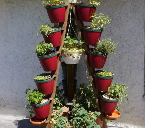 Pflanztürme